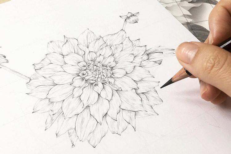 vintage_inspired_botanical_illustration